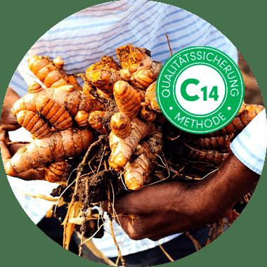 Kurkuma-Kapseln mit natürlichem Curcuma-Extrakt