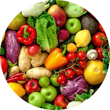 Multivitamin Multi-Mineral und Multi-Vitamin Komplex Kapseln