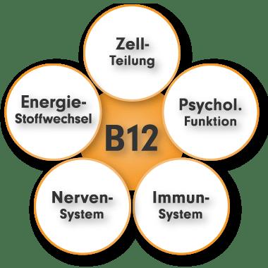 Vitamin B12 hochdosiert - Methylcobalamin Vit B12 für Gesundheit