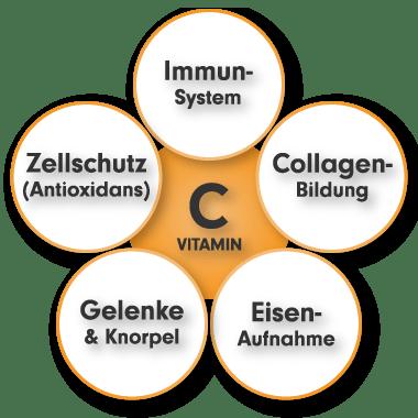 Vitamin C hochdosiert - natürliches Vitamin C Aufgaben und Funktionen