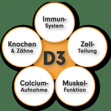 Vitamin D3 Mangel - Vitamin D3 K2 MK7 von ProFuel - Vitamin D3 vegan