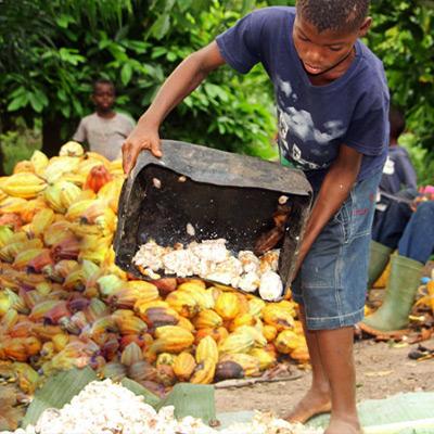 Bio-Landwirtschaft - Arbeitsbedingungen