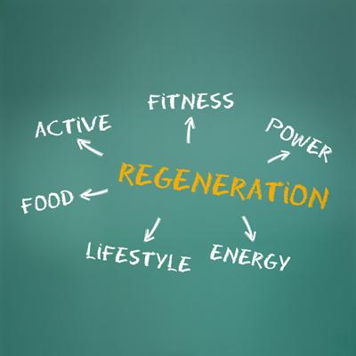 Muskelaufbau Regeneration - Muskeln aufbauen