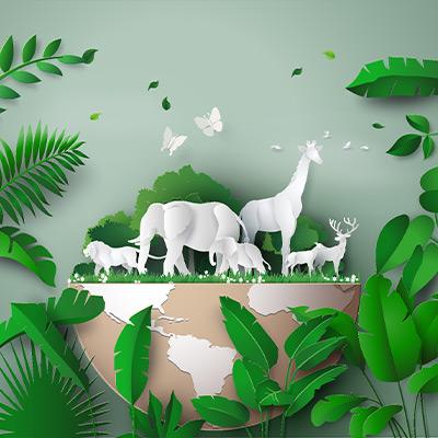 Vegane Ernährung - positiv für Tierwohl und Umwelt