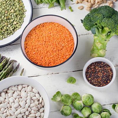 Protein- Eiweiss-Bedarf in der Diät bzw. beim Fettabbau
