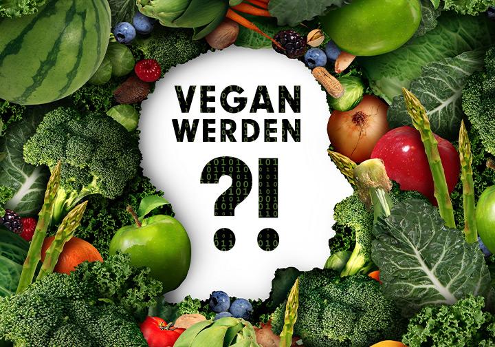 VEGAN WERDEN - so gelingen dir die ersten Schritte zu einer pflanzlichen Ernährungsweise.