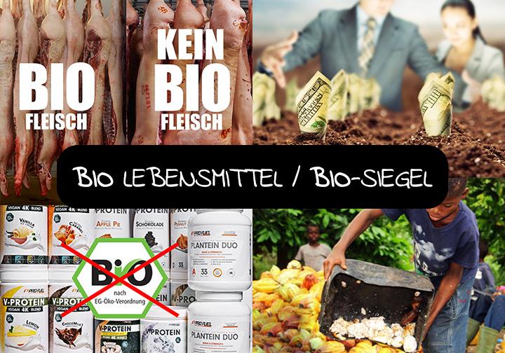 Die Schattenseiten der Bio-Industrie - hat Bio wirklich Vorteile und wie sieht es mit dem Tierschutz aus?